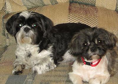 Molly and Macy